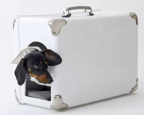Portable Dog House by Marco Morosini